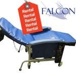 RENTAL of P.A.W.S. ™ Bariatric Power Weight Shift Chair - EACH MPAWB12W
